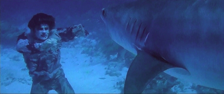 shark-vs_zombie-1
